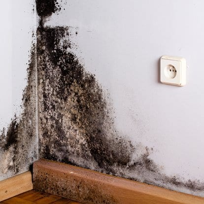 basement waterproofing to prevent mold